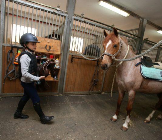 Výuka jízdy na koni pro děti, parkur, děti, pony, poník, dvůr Hoffmeister, Velké Čičovice, 8.4.2017,